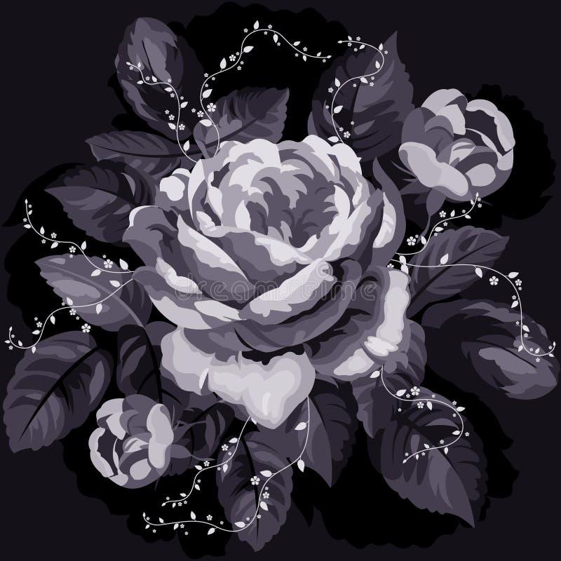 黑白照片玫瑰色葡萄酒 皇族释放例证