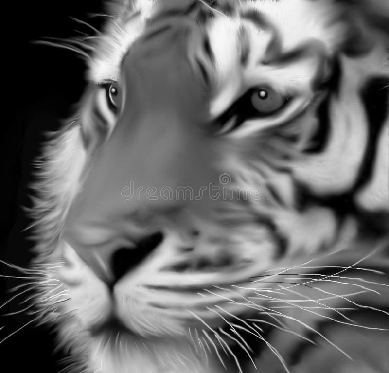 黑白的老虎的面孔 向量例证