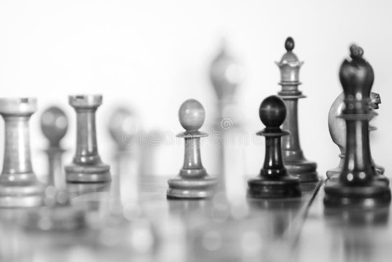 黑白老木的棋 免版税库存照片