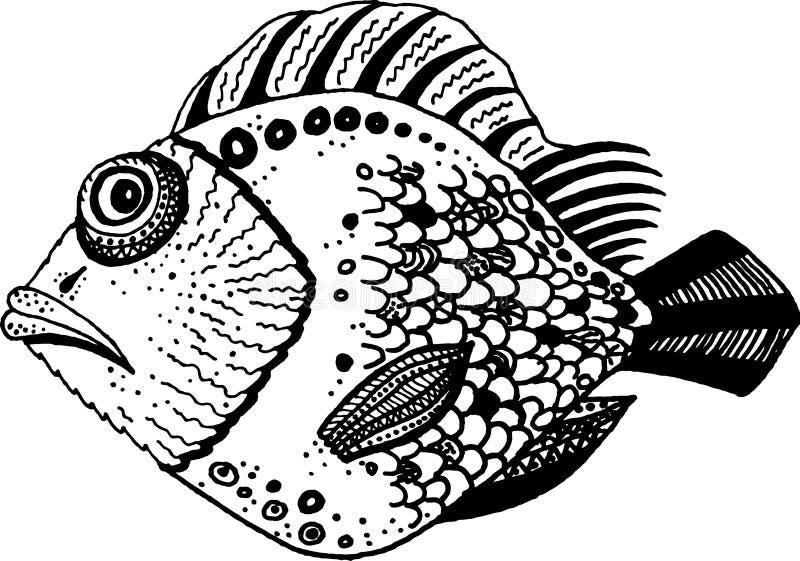 黑白装饰鱼 向量例证
