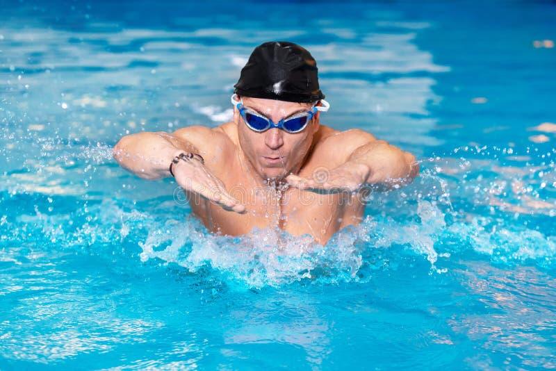 黑盖帽的肌肉游泳者年轻人在游泳场,执行蝶泳 库存图片