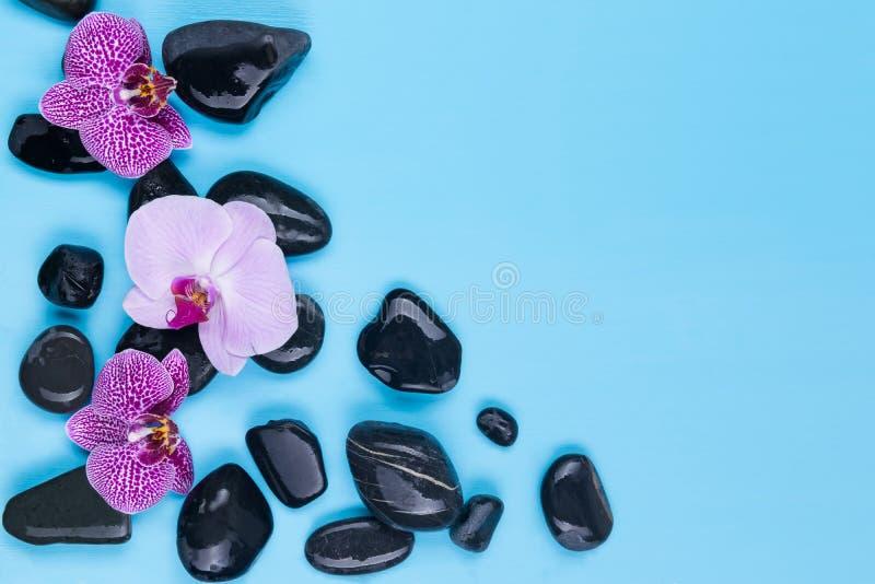 黑石头和花温泉治疗的,在蓝色背景 图库摄影