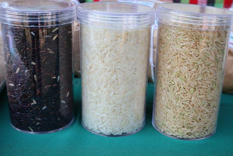 黑米,白米是world& x27的谷物;s人口消耗作为重要食物 特别是在亚洲 免版税库存照片
