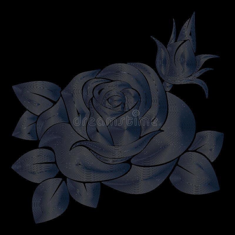 黑背景的罗斯,银色玫瑰,线性艺术,传染媒介例证,eps 10 向量例证