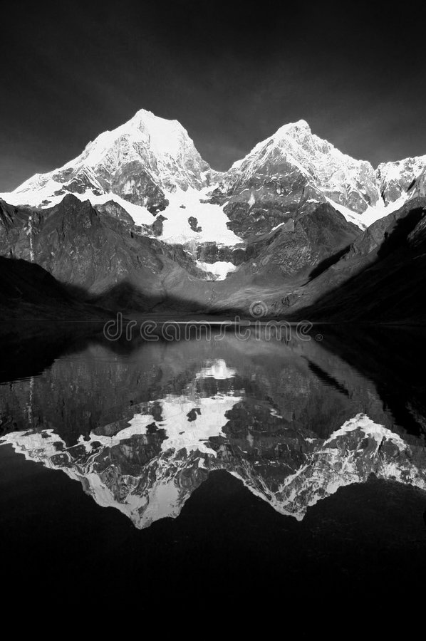 黑色反映白色 免版税库存照片