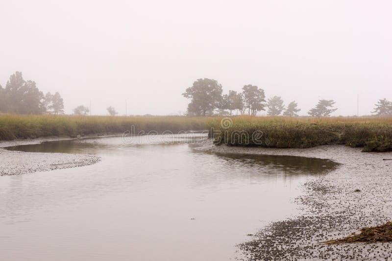 黑色小河在一有雾的天 库存照片