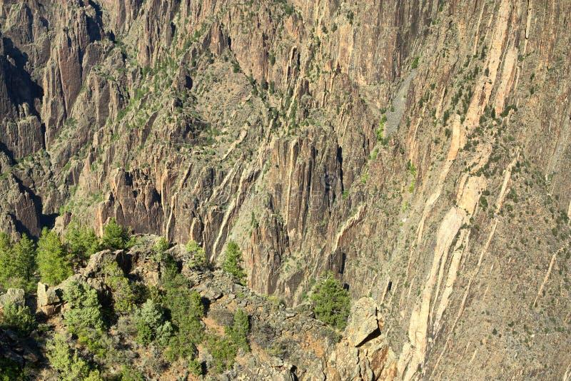 黑色峡谷 免版税库存图片