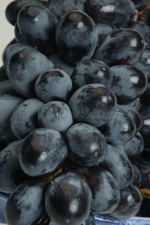 黑色接近的葡萄 库存照片