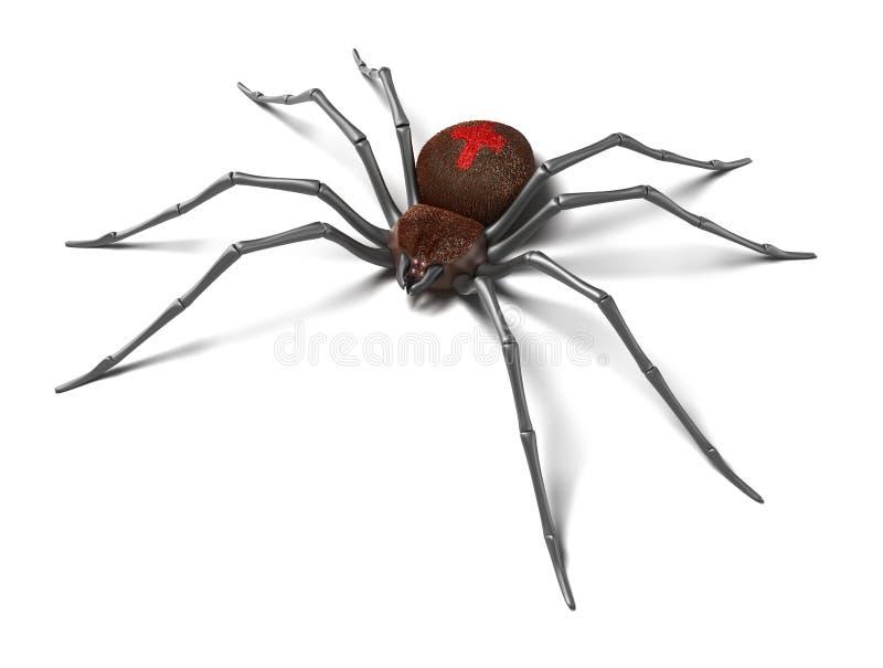 黑色查出的蜘蛛表面白色寡妇 向量例证