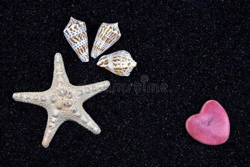 黑色沙子海星 图库摄影