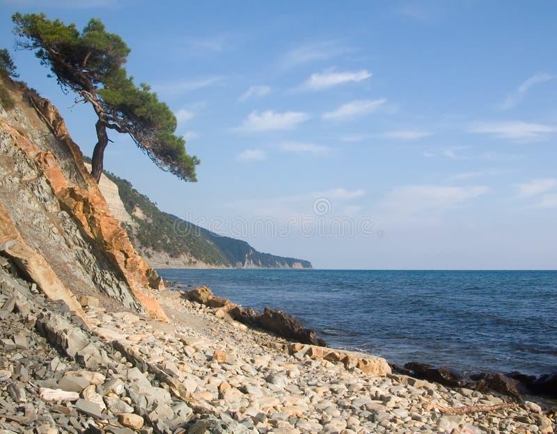 黑色海岸岩石海运 库存照片