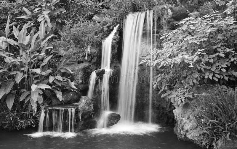 黑色瀑布白色 库存照片