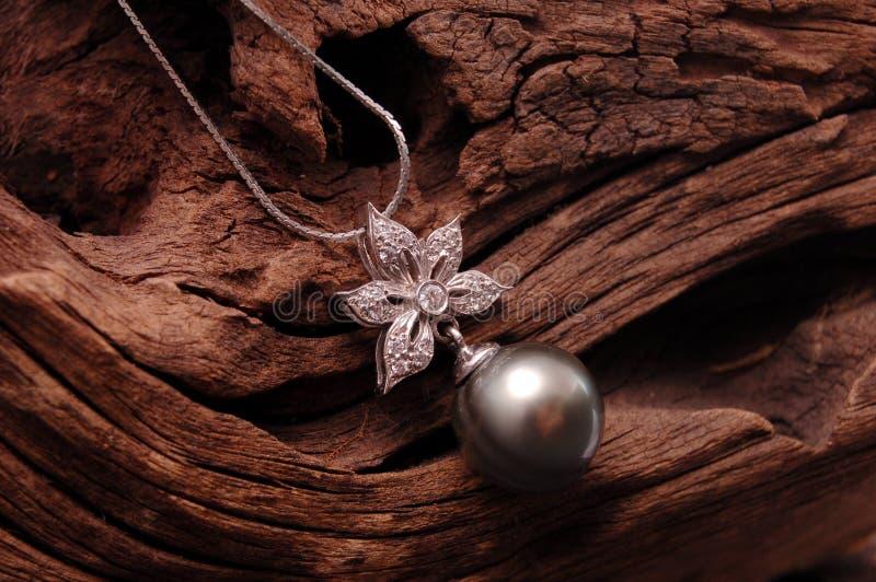 黑色珍珠项链 库存照片