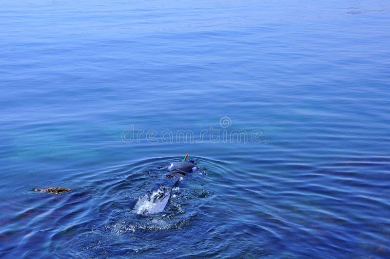 黑色罗马尼亚海运潜水艇 免版税库存照片