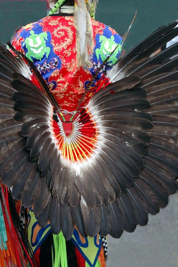 黑色羽毛 免版税库存图片