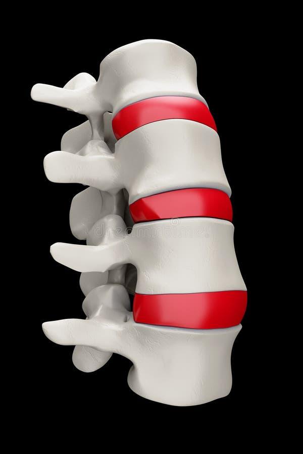 黑色脊椎 向量例证
