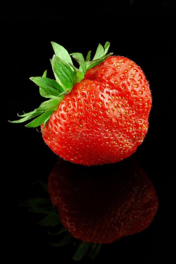 黑色草莓 免版税库存图片