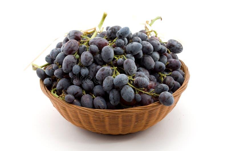 黑色葡萄 免版税库存图片