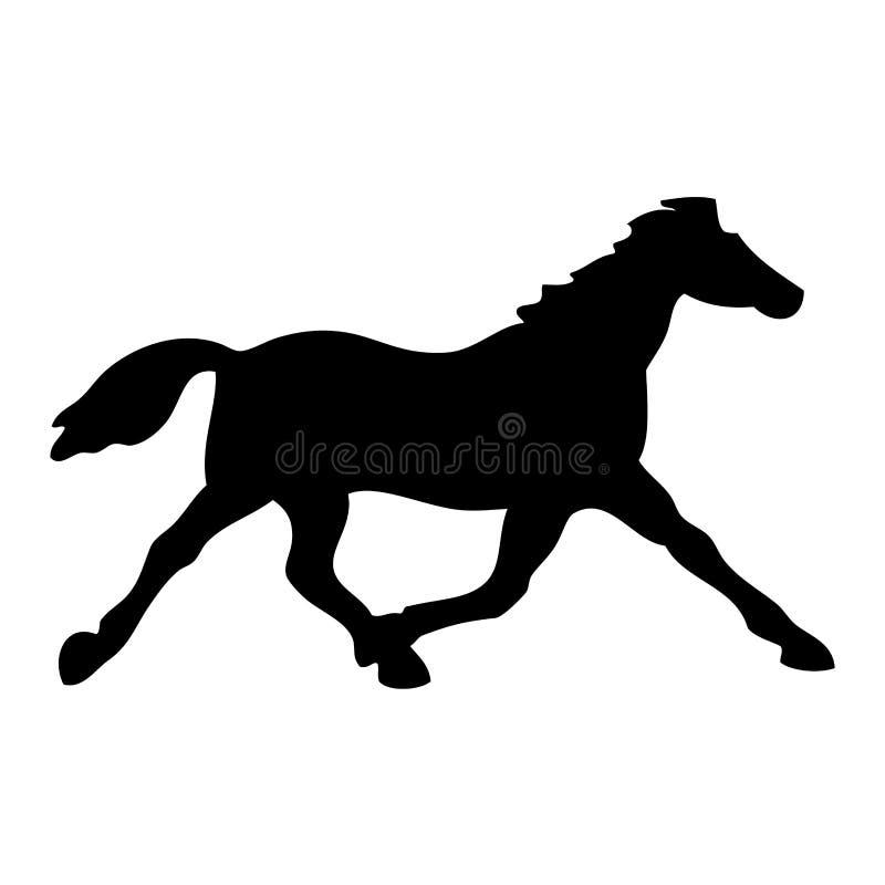 黑色马 免版税库存图片
