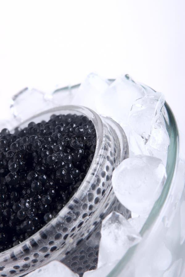 黑色鱼子酱 免版税图库摄影