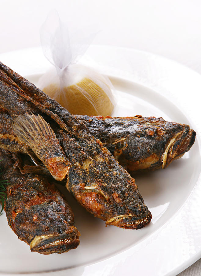 黑色鱼虾虎鱼海运 库存照片