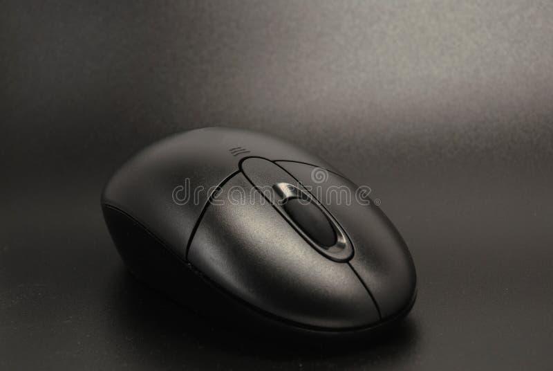 黑色鼠标 库存图片