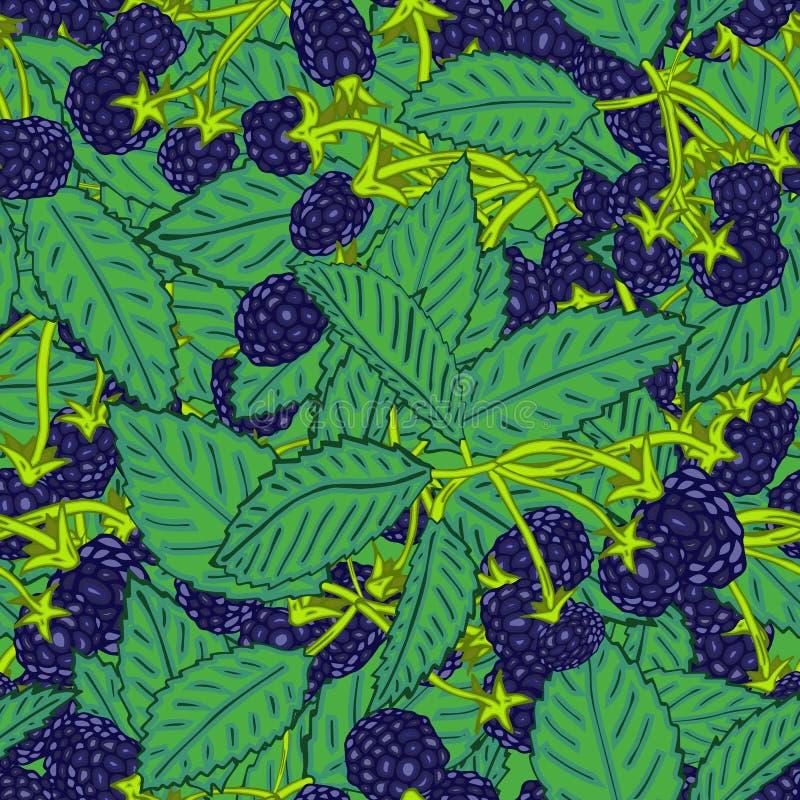 黑莓或莓的无缝的样式 纺织品的莓果背景,墙纸,套图画,盖子,表面 皇族释放例证