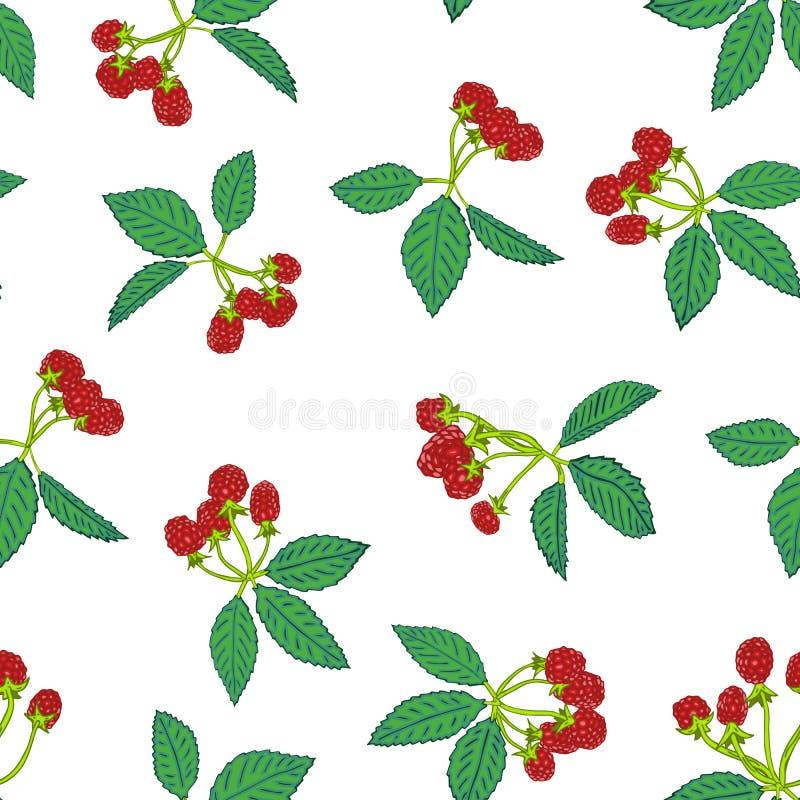 黑莓或莓的无缝的样式 纺织品的莓果背景,墙纸,套图画,盖子,表面 向量例证