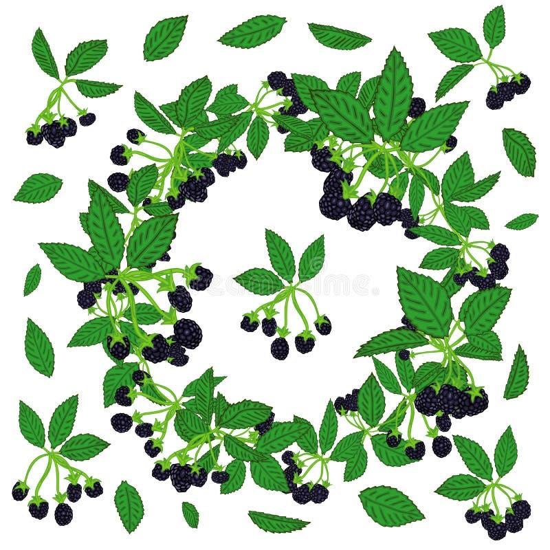 黑莓或莓的花圈样式 纺织品的莓果背景,墙纸,套图画,盖子,表面 库存例证