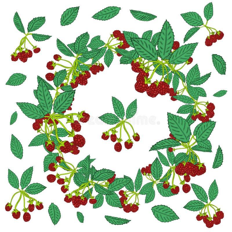 黑莓或莓的花圈样式 纺织品的莓果背景,墙纸,套图画,盖子,表面 皇族释放例证