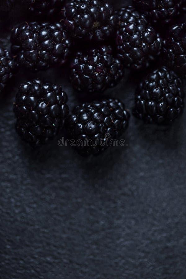 黑莓背景 新鲜的黑莓特写镜头在黑t的 免版税图库摄影