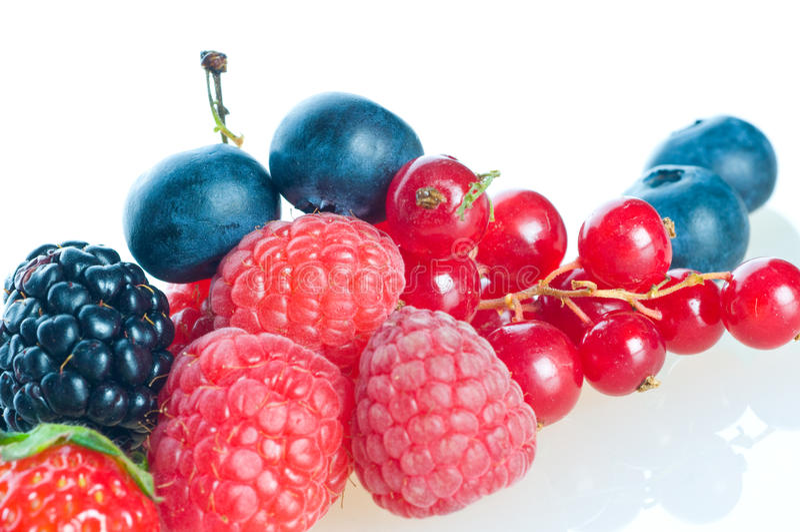 黑莓蓝莓莓 免版税库存照片