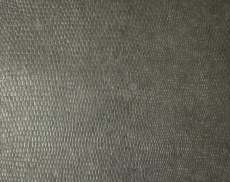 黑蛇皮关闭 背景 纹理 免版税库存图片