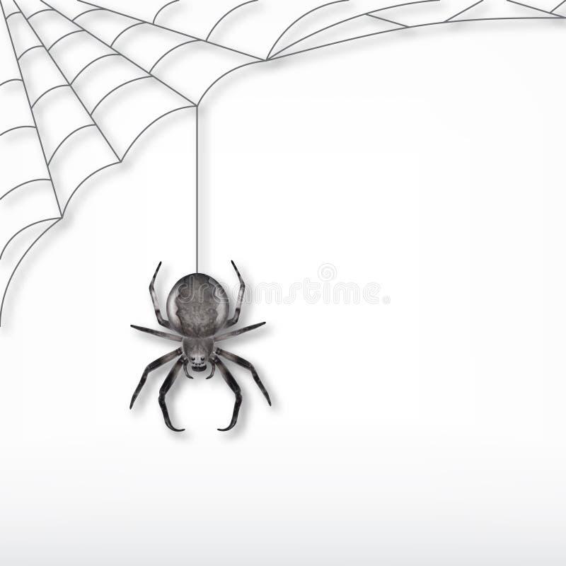 黑蜘蛛和网 向量例证