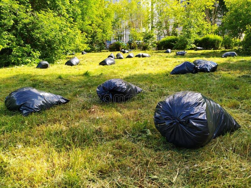 黑袋子在干净,绿色草坪的垃圾谎言在公园 免版税库存图片