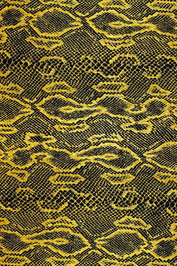 黑金蛇皮纹 免版税库存照片
