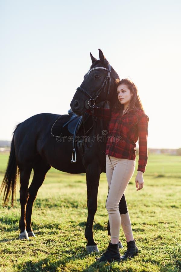 黑马和一个可爱的少妇 免版税库存图片