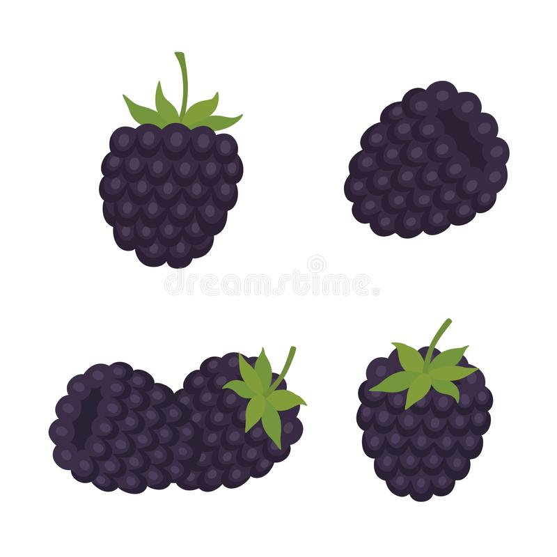 黑鹂 甜果子 森林莓果 图标被设置的互联网图表导航万维网网站 库存例证