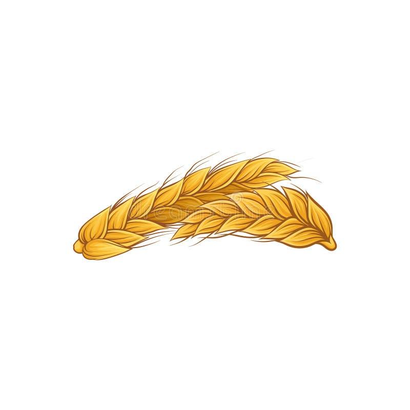 黑麦的两个金黄耳朵 谷物麦子象  有机农业庄稼 面包店商店海报的装饰元素或 皇族释放例证