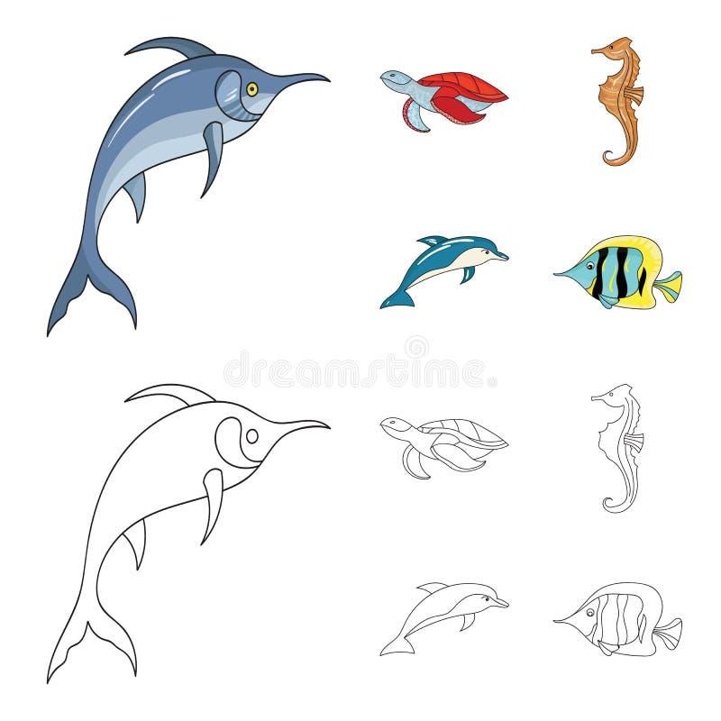 默林、乌龟和其他种类 海洋动物设置了在动画片,概述样式传染媒介标志股票的汇集象 向量例证