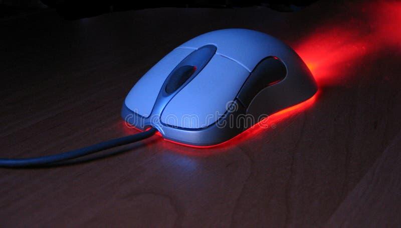 鼠标个人计算机 免版税图库摄影