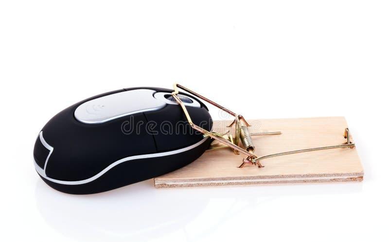 鼠标捕捉 免版税库存图片