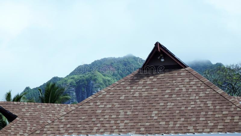 鼠灰色橡胶铺磁砖了屋顶和迷雾山脉 图库摄影