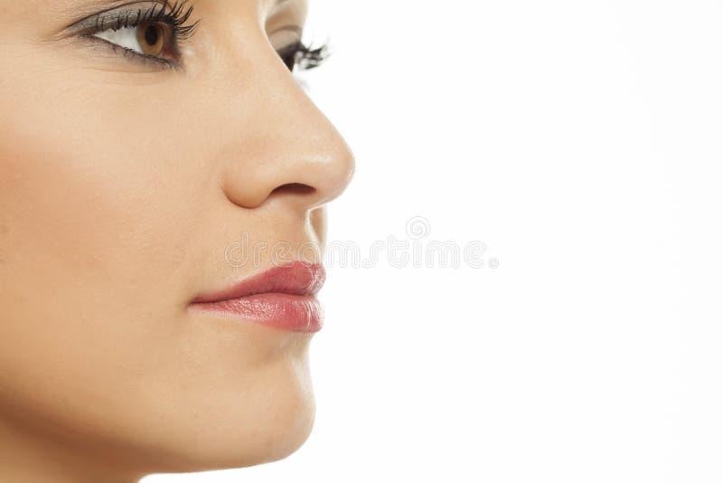鼻子、嘴唇和面颊 库存图片