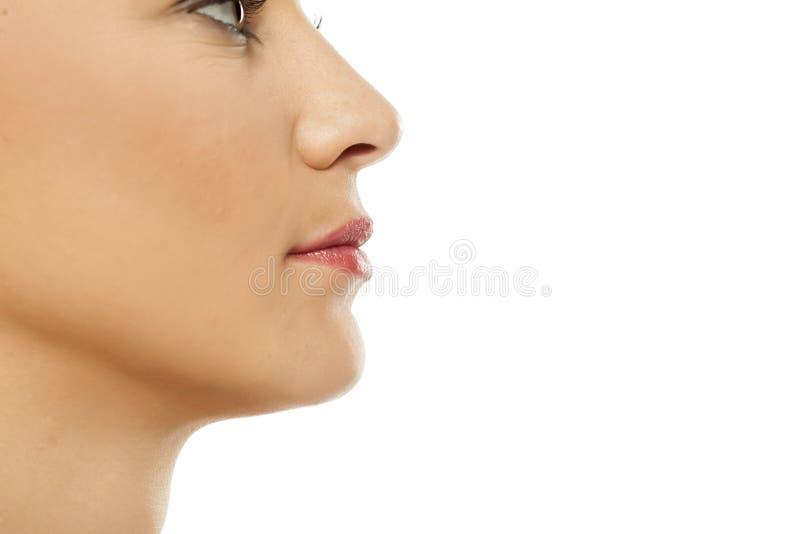 鼻子、嘴唇和面颊 免版税库存照片