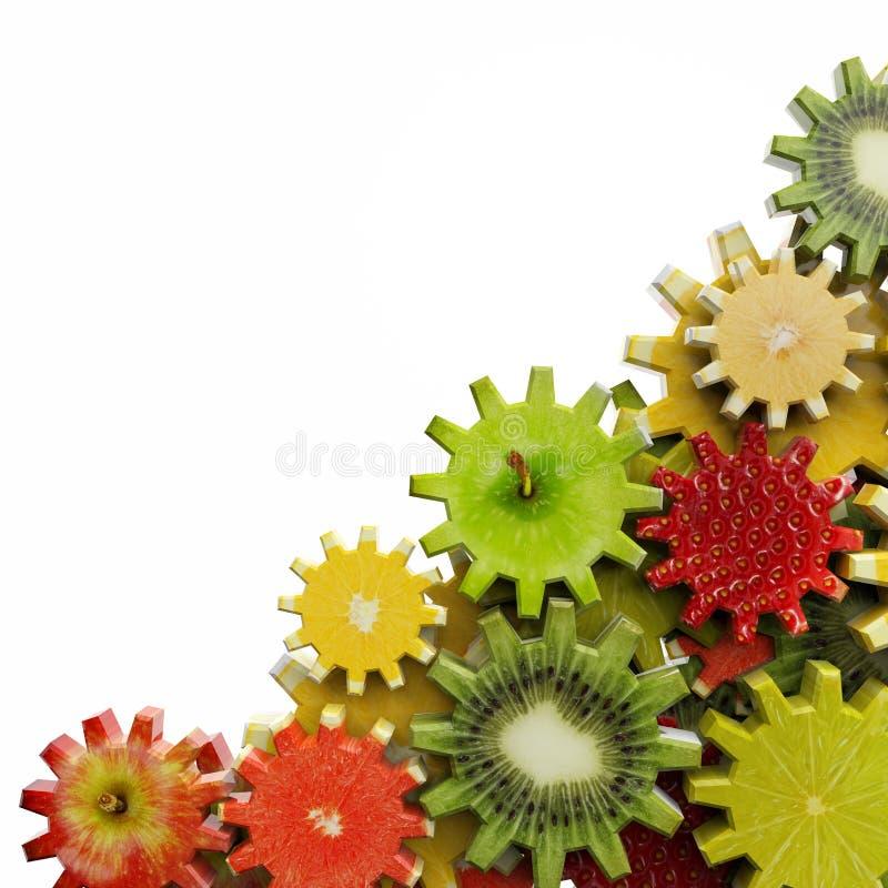 齿轮由果子切片做成 免版税库存照片