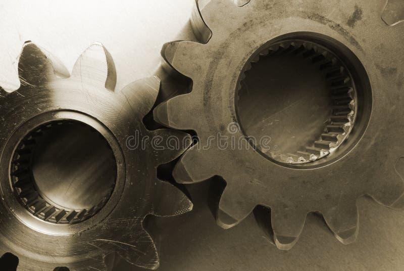 齿轮看起来稍老乌贼属 免版税库存图片