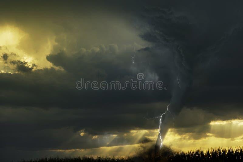 龙卷风-在领域的漏斗云彩