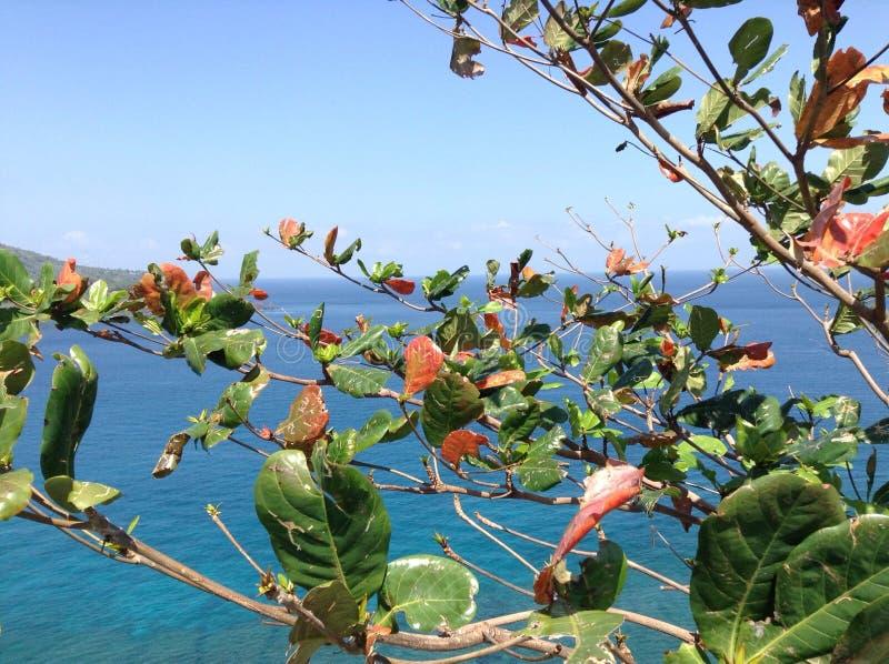 龙目岛海岛自然和海视图 免版税库存照片
