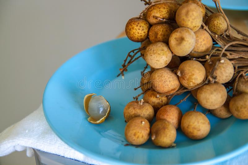 龙眼卢姆亚伊热带水果在泰国 免版税库存照片